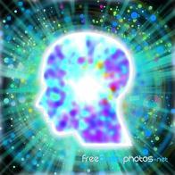 Επιληπτικές αντιδράσεις σε εκφυλισμό εγκεφαλικών κυττάρων