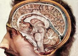 H «πίεση» στον εγκέφαλο και εγκεφαλονωτιαίο υγρό