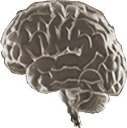 Η σπονδυλοπαρεγκεφαλιδική συνδρομή και η μαγνητική τομογραφία του εγκεφάλου