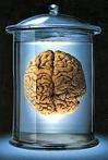 Η «κατανόηση» του αμυντικού συστήματος (ανοσοποιητικό) του οργανισμού