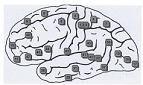 Νευρολογικές παθήσεις και αντισώματα ιών