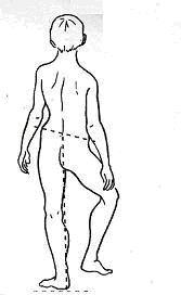 Μυοπάθειες και μυϊκές δυστροφίες