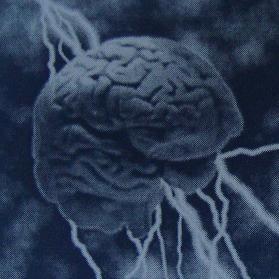 Ηλεκτρομαγνητισμοί και ευφυΐα
