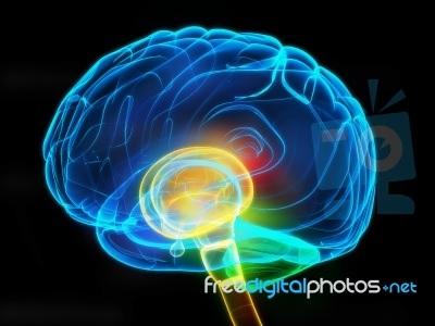 Θεραπεία του πόνου με διακρανιακό μαγνητικό ερεθισμό και φαρμακευτική αγωγή