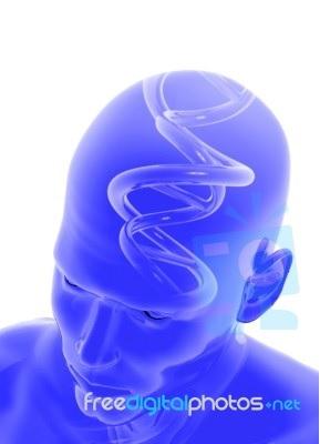 Αντιφωσφολιπιδικό σύνδρομο, επιληπτικές κρίσεις, νεφρική δυσλειτουργία