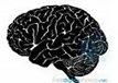 Εγκεφαλικά τραύματα και συμπεριφορά