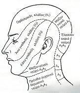 Πτώση της ακοή και κουδουνίσματα στο αυτί ή νόσος του Ménière